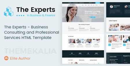 قالب HTML چندمنظوره و شرکتی The Experts