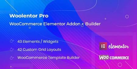 افزودنی المنترو WooLentor Pro برای ایجاد صفحات در ووکامرس